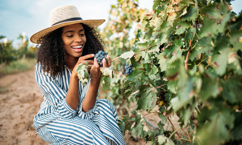 Young,Black,Woman,Eating,A,Grape,In,A,Vineyard